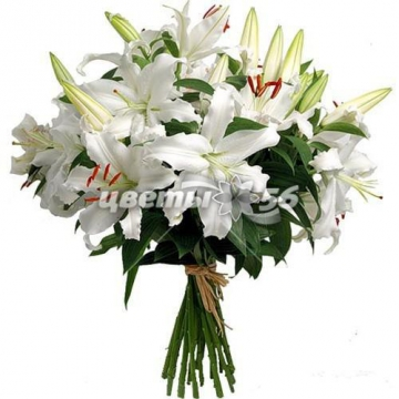 Оренбург доставка цветов белые лилии купить цветы на балкон